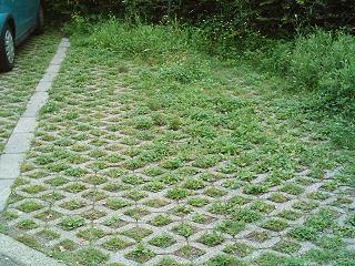 parcheggio invalidi nell'erba