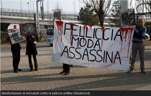 pelliccia moda assassina